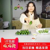 新鲜水果生吃小黄瓜新鲜无刺黄瓜热卖1斤装孕妇水果农家蔬菜