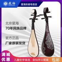 高档琵琶厂家琵琶专业演奏琵琶入门乐器硬木直销初学大人儿童红木