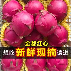 金都一号蜜宝红心火龙果大果当季水果新鲜红肉5斤整箱包邮海南10