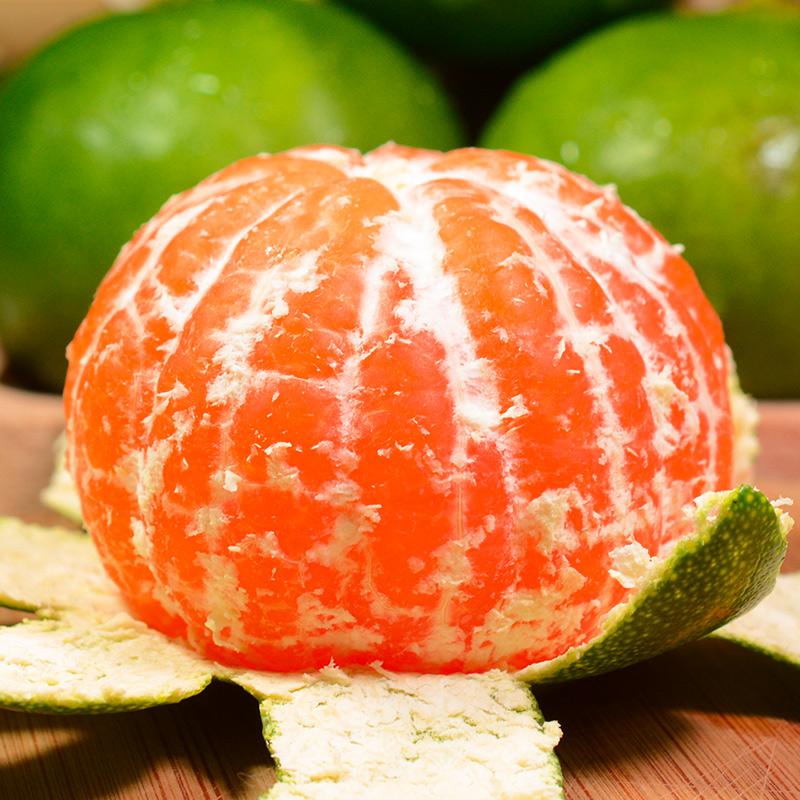湖北宜昌蜜桔无籽柑橘新鲜水果当季早熟现摘青皮桔子包邮甜5斤10