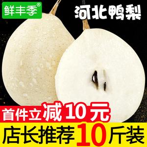 鲜丰季 河北赵县鸭梨新鲜水果梨子整箱5斤10斤水晶鸭梨整箱包邮