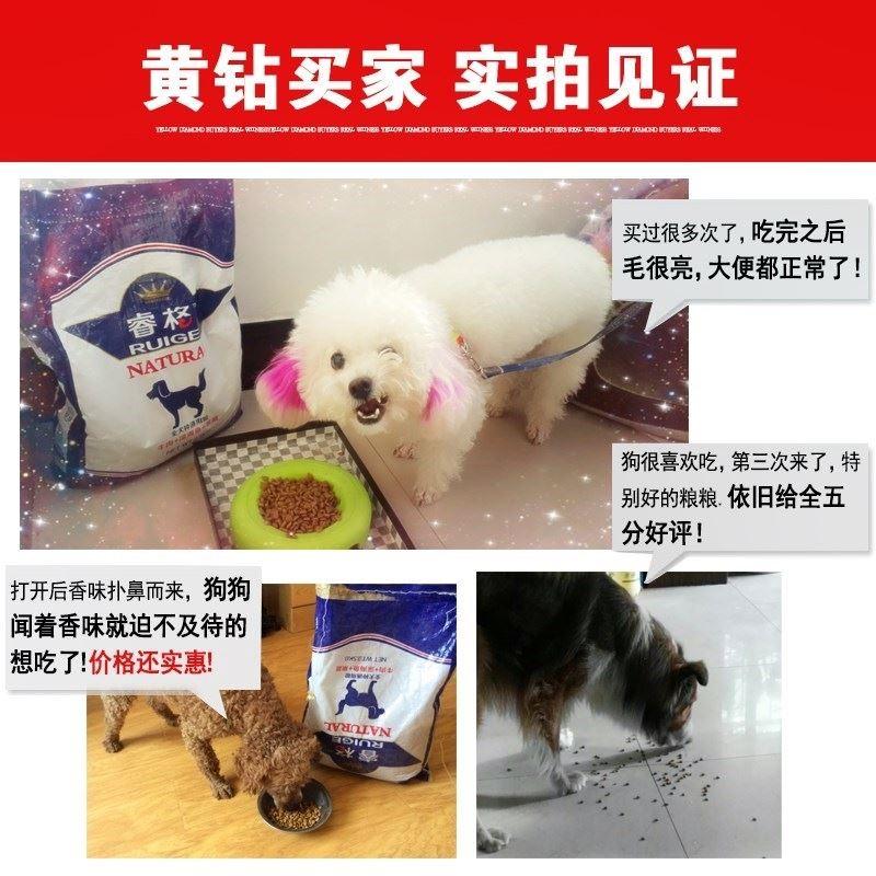 石龙贵宾泰迪狗粮幼犬成犬小型犬专用美毛去泪痕通用型天然奶糕优惠券
