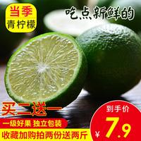 海南青柠檬2斤皮薄多汁一级新鲜当季水果批发6斤免邮非安岳黄柠檬