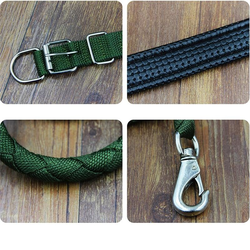 Bulldog medium dog large dog German small dog walking small dog rope traction rope with bully dog.