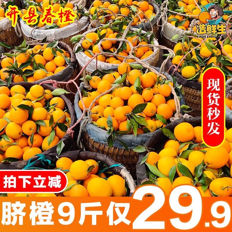 新鲜脐橙10斤橙子春橙水果孕妇水果非奉节赣南血橙橘子纽荷尔