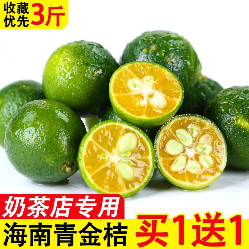 限时抢购海南青金桔奶茶店专用新鲜应季水果批发小金桔子青柠檬3整箱包邮