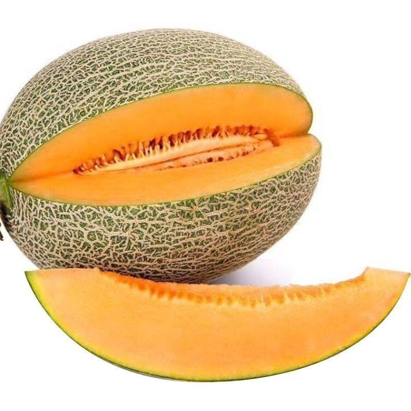 新疆吐鲁番哈密瓜新鲜水果特价8斤包邮10牛奶水果热带