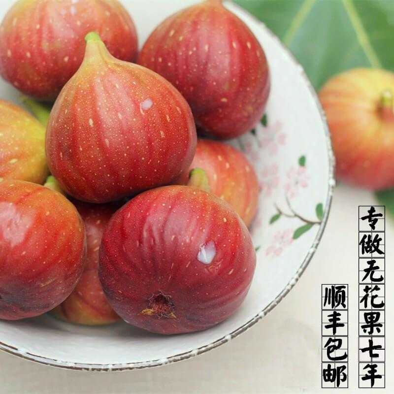 11月16日最新优惠无花果新鲜新鲜无花果新鲜时令水果红紫皮孕妇产妇空运顺丰3斤装
