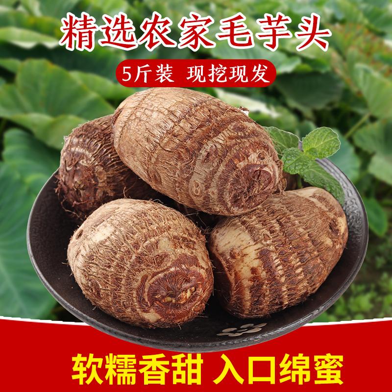 19年芋头新鲜小芋头毛芋头香芋农家自种芋头芋艿非荔浦芋头5斤10