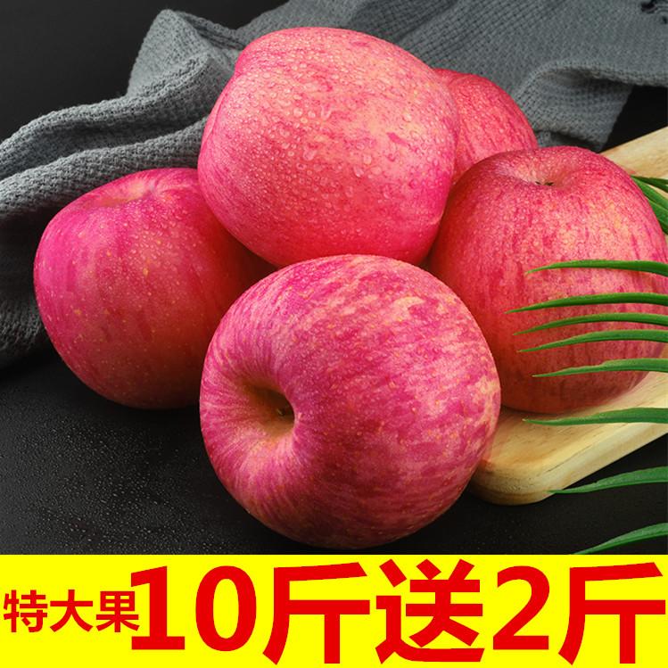 山东烟台红富士苹果5斤10斤水果新鲜带箱一整箱平果包邮应当季萍