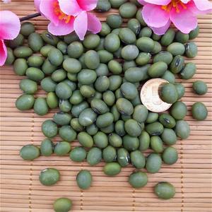 大青豆杂粮苏北自种青皮青芯生青豆