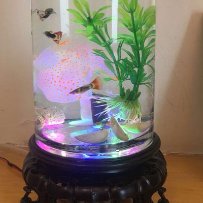 Дополнительные товары для аквариума Артикул 639561967473