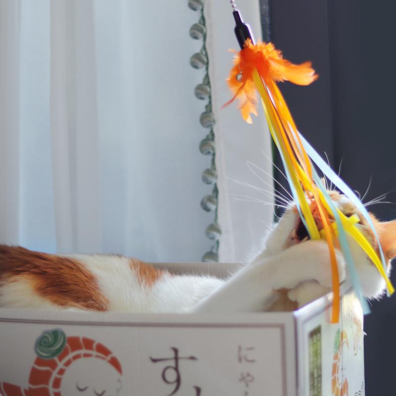 仙女棒逗猫棒羽毛铃铛逗猫杆结实耐咬流苏丝带猫玩具自嗨猫咪用品