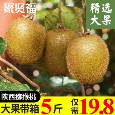【天猫农场】陕西周至猕猴桃带箱5斤新鲜当季水果绿心奇异果大果