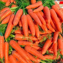 红萝卜水果胡萝卜新鲜红罗卜带箱10斤蔬菜吃货助农家产品当季整箱