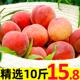 现摘水蜜桃新鲜水果10斤超甜桃子当季整箱毛桃脆孕妇应血桃包邮