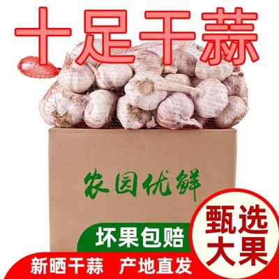 2019年新大蒜干蒜大蒜头紫皮蒜蒜种蒜籽3斤装