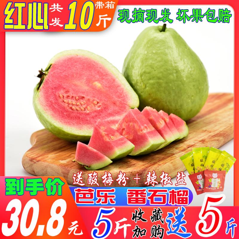 广西特产红心芭乐果番石榴新鲜水果10巴乐果3整箱包邮5斤装红肉潘
