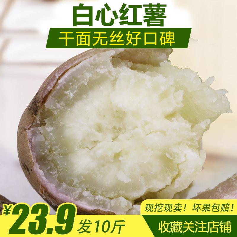 10斤白心红薯新鲜现挖干面白芯地瓜农家自产山芋粉糯板栗白薯红苕券后23.90元