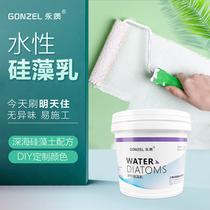 永质水姓乳胶油漆室内彩色家用净化甲醛内墙翻新自刷环保硅藻涂料