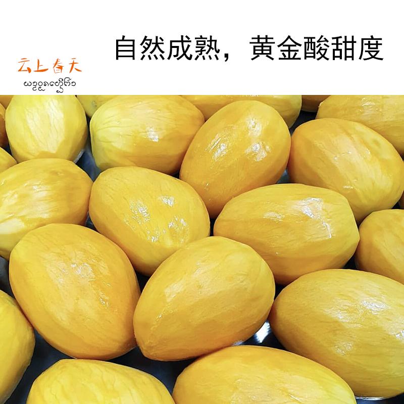 云南西双版纳香甜芒果干150g/盒水果干果脯蜜饯零食小吃休闲食品