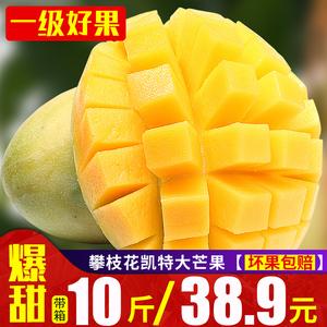 四川攀枝花凯特芒果现摘时令新鲜水果带箱10斤产地直发当季大芒果