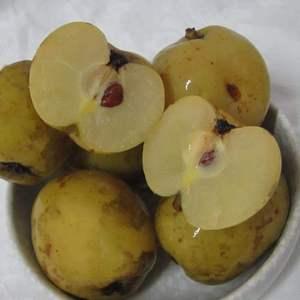 云南新鲜多依果肉质细腻净重水果