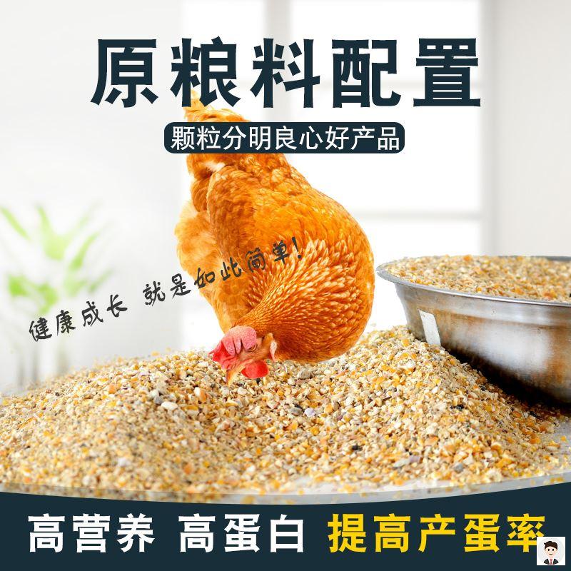 大鸡鹅食鹌鹑饲料芦丁鸡用养殖用产蛋鸡饲料鸡食鸽子用-鸡饲料(载载家居专营店仅售32.24元)