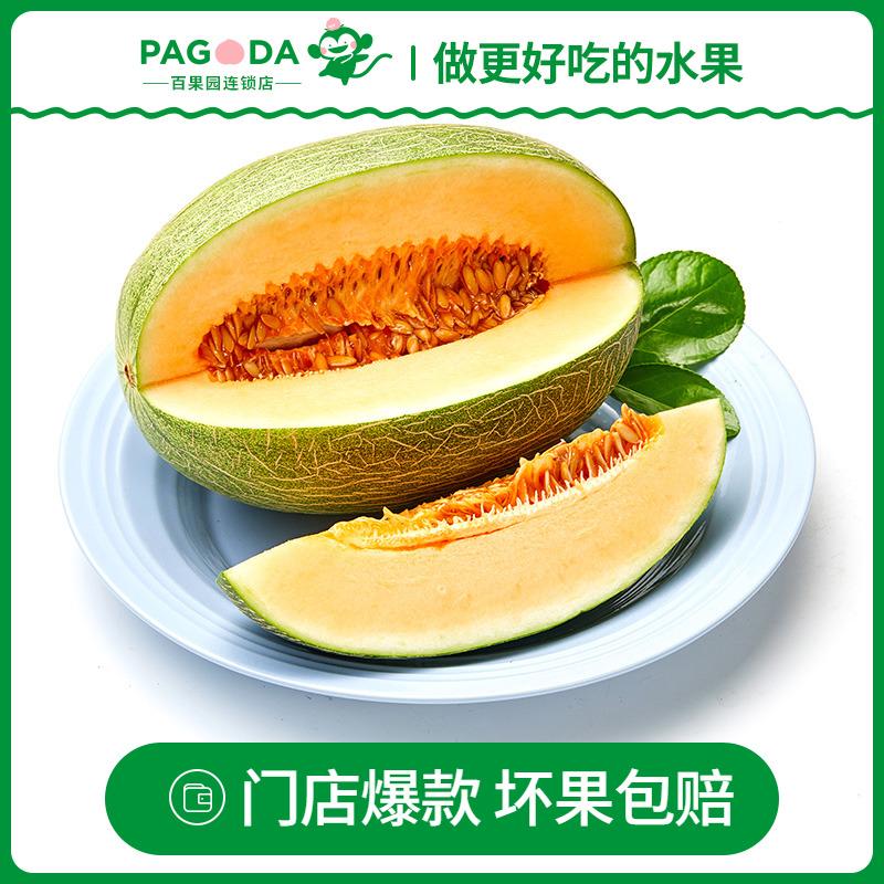 【百果园店】A级-山东沙漠蜜瓜1个3.5斤以上哈密瓜甜瓜新鲜水果