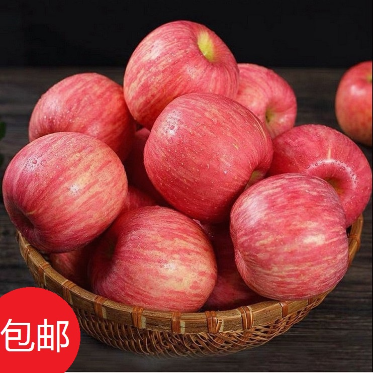 Newly picked organic apple fresh Shaanxi Baishui early maturing Red Fuji rock sugar with crisp and sweet heart