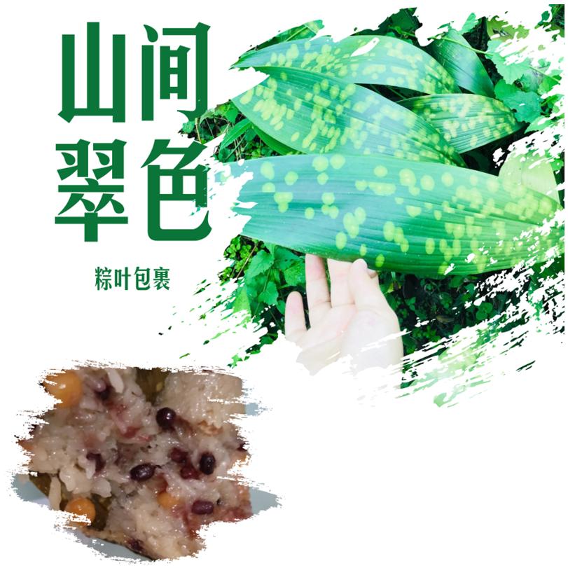腊肉粽子四川 150g大粽峨眉粽子四川特产椒盐味5个装老少可吃软糯
