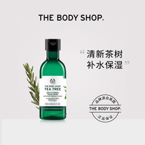 茶树洁面喱250ml清洁清爽控油洗面奶TheBodyShop美体小铺