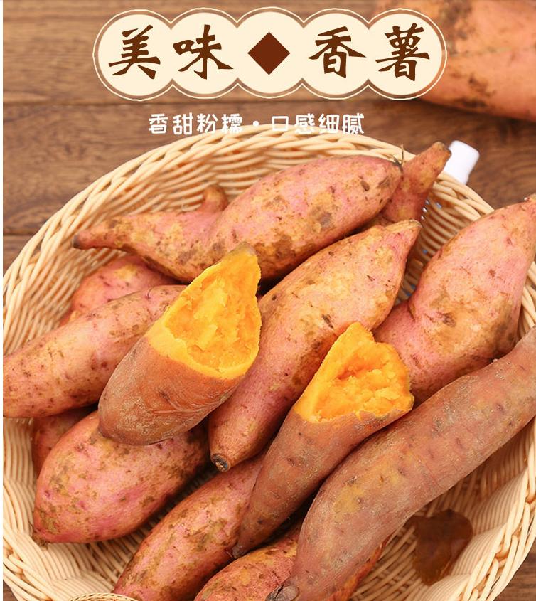 楼兰露丝新鲜番薯红薯地瓜农家蜜薯5斤板栗香红沙地薯糖心山芋