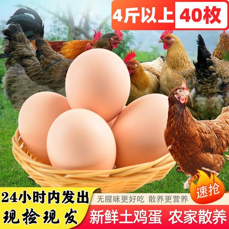 农家散养土鸡蛋新鲜40枚农村草鸡蛋自养柴鸡蛋无沙门氏菌本笨鸡蛋