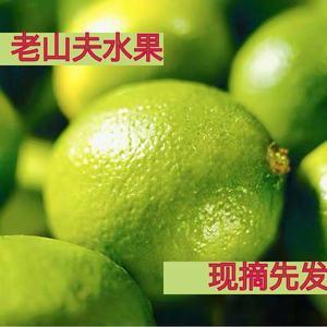 【第二件半价】现摘青柠檬新鲜水果当季小青柠薄皮榨汁酸5斤免邮