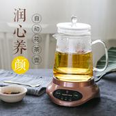 特莱雅家用养生壶小型办公室全自动花茶煮茶器加厚玻璃电煮茶壶