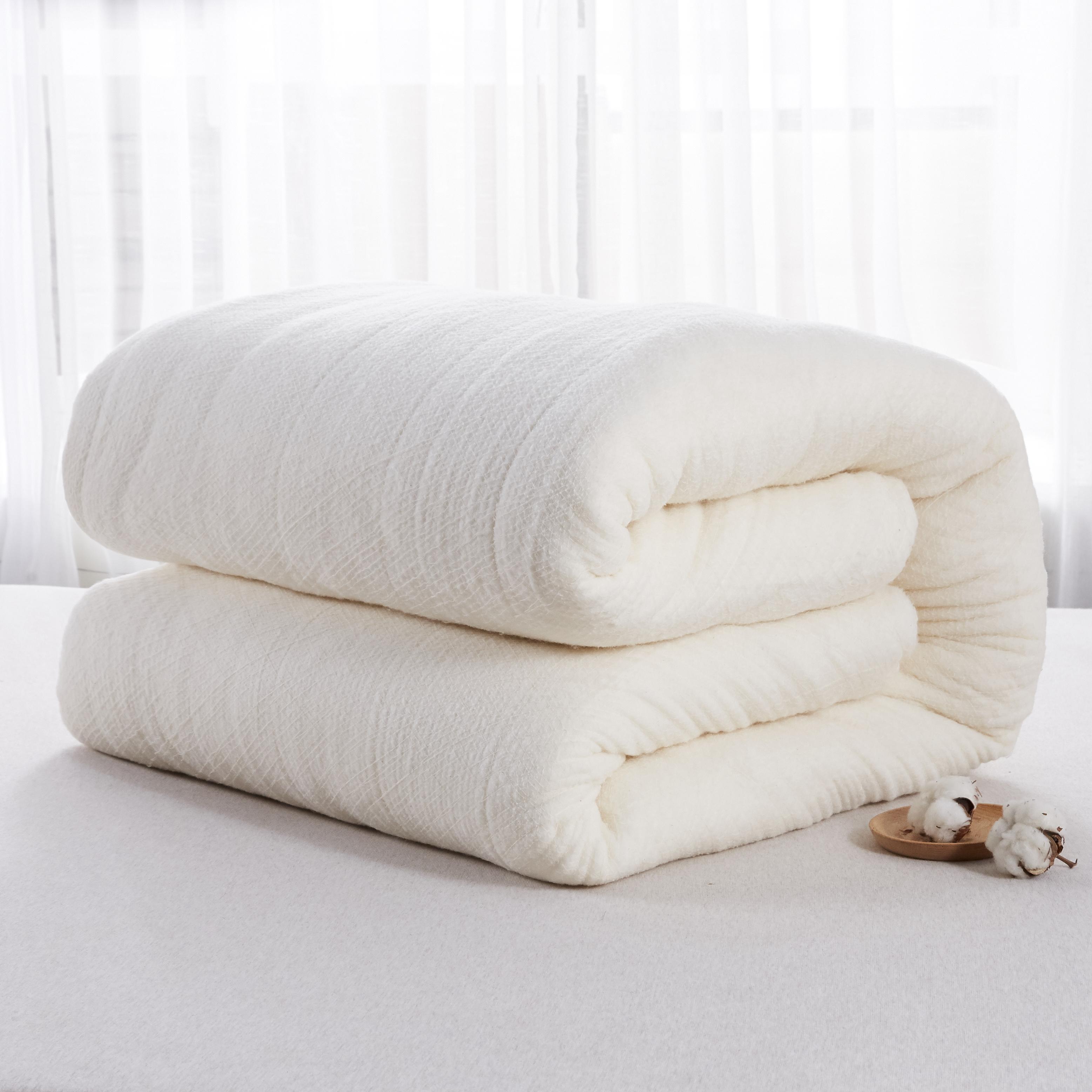 围网棉花被单双人学生棉絮被芯 全网比价清仓处理 新疆棉花被