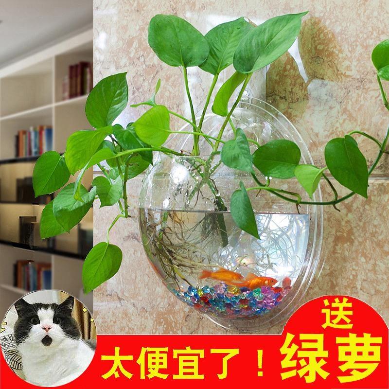 墙壁水培玻璃挂花瓶质量好吗