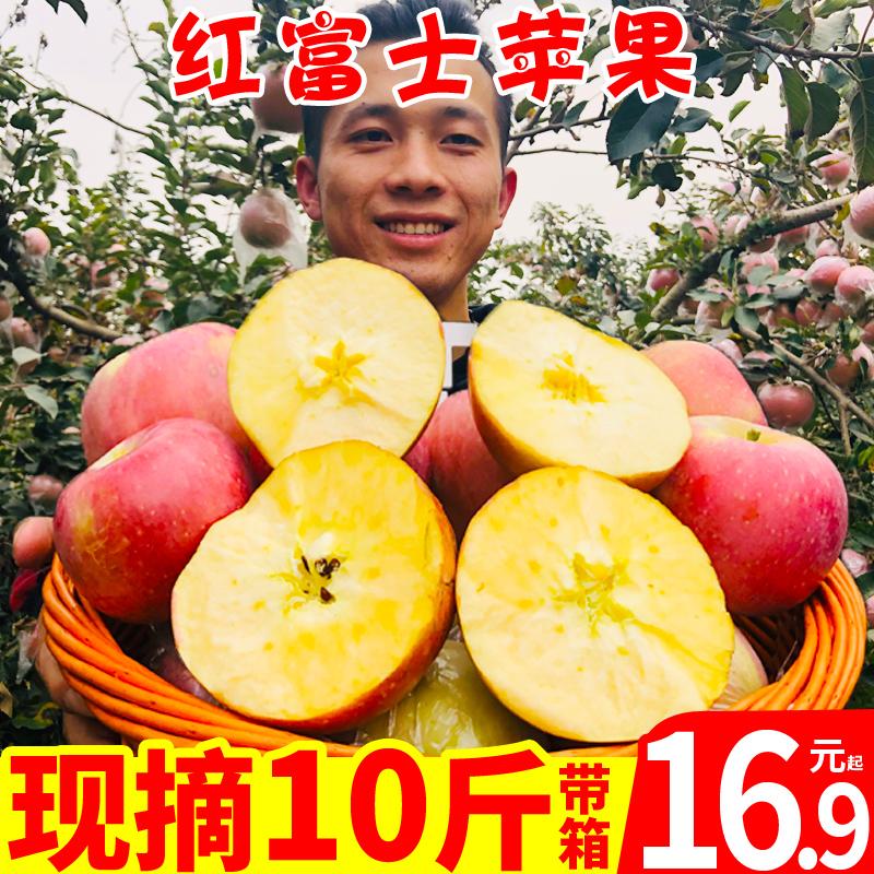 陕西红富士苹果水果新鲜冰糖心苹果包邮整箱10斤嘎啦丑苹果