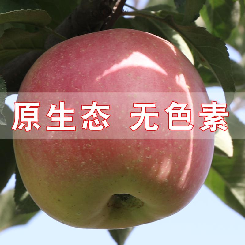 新鲜水果脆甜冰糖心丑苹果红富士5斤包邮非陕西烟台当季现摘现发