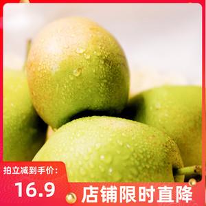 山西运城红香酥梨带箱5斤10斤应秋季9月新鲜水果现摘脆甜梨子