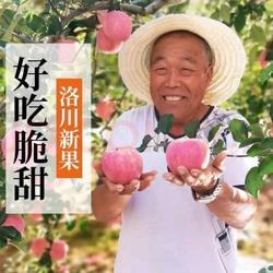 正宗洛川苹果10斤脆甜现摘陕西红富士当季孕妇水果非冰糖心阿克苏