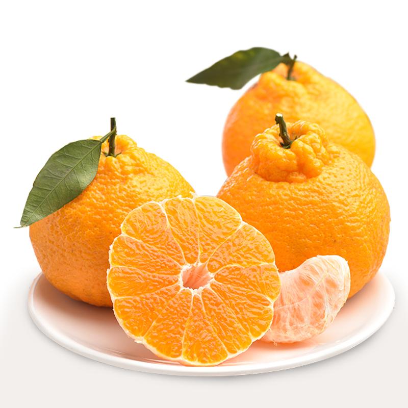 率田不知火耙耙柑丑橘子春见精品五斤大果丑八怪柑橘碰柑产地直发