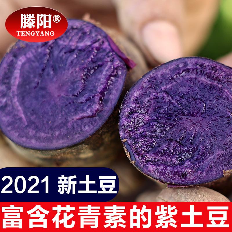 2021新鲜迷你紫土豆小土豆农家黑金刚黑美人黑土豆马铃薯3斤