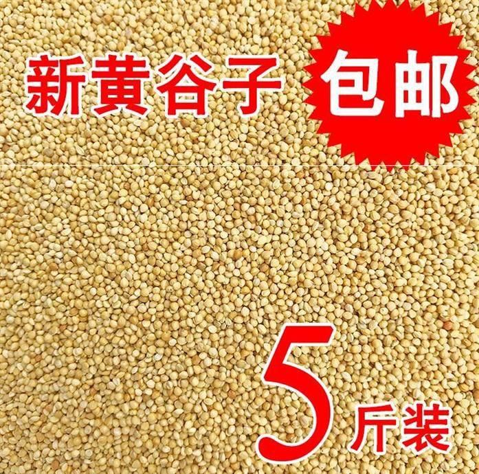 乌食鸟饲料小鸟吃的食物麻雀鸟食小鹦鹉鸽子颗粒201-鸽饲料(蕴橙汇家居专营店仅售19.4元)