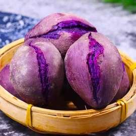 紫薯5斤新鲜现挖板栗红薯地瓜番薯蜜薯山芋香薯沙地香甜软紫薯10图片