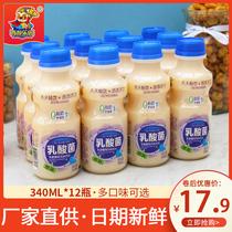 原味乳酸菌飲品340mlx12瓶養胃風味酸牛奶動力兒童飲料整箱益生元