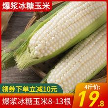 【中劳】爆浆牛奶小玉米福建水果玉米甜玉米即食生吃8-13根4斤装