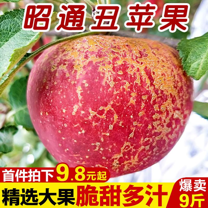 云南冰糖心苹果新鲜10斤当季小嘎啦
