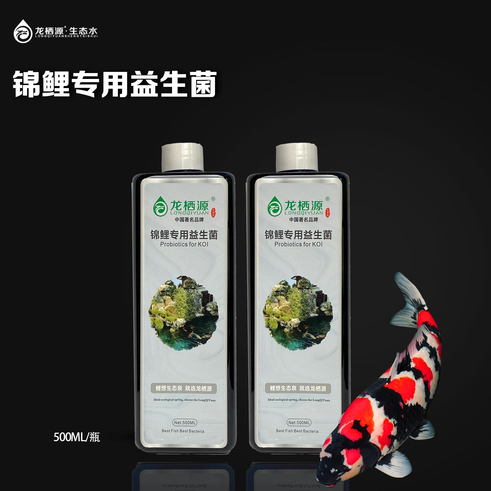 Probiotics for Koi in longqiyuan prevent bacterial enteritis and restore intestinal microecology balance of Koi